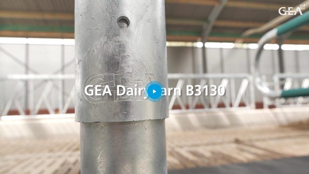 Gea Dairy